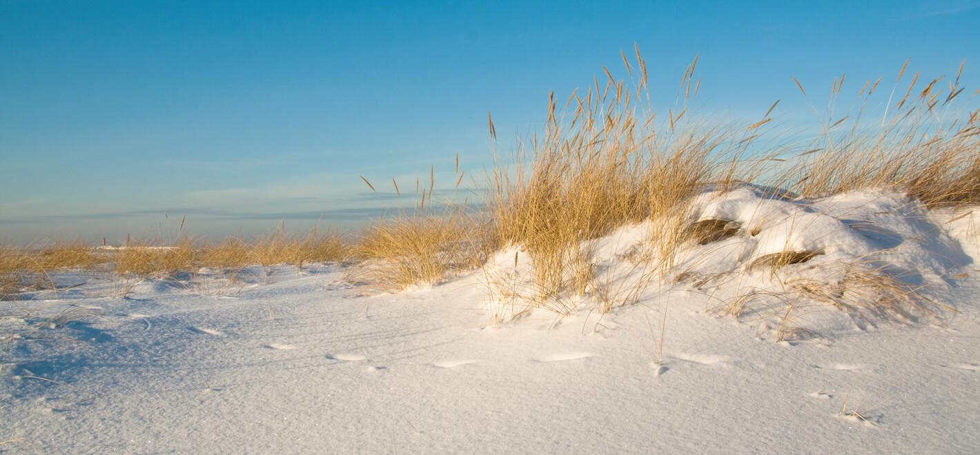 Startseite – Winterstrand